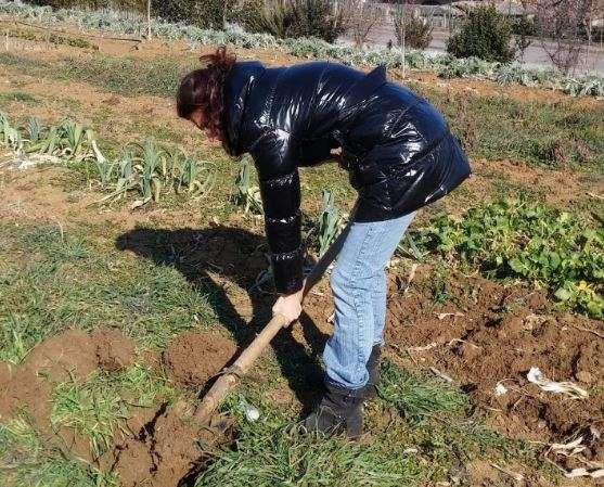 scavare una buca