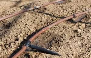 Tubo di irrigazione a ala gocciolante
