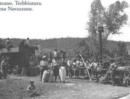 La trebbiatura in Valdichiana (II parte) Ricordi dei lavori in campagna negli anni '40 e '50
