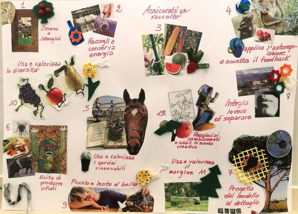 I 12 principi della permacultura
