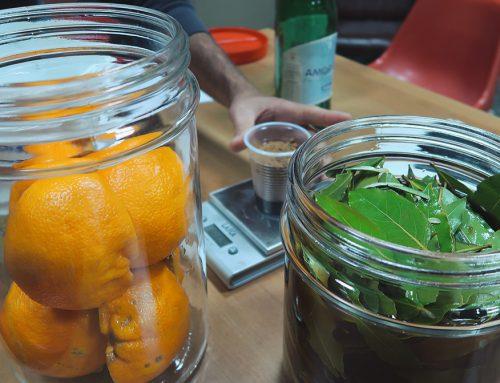 Fervida, la rivoluzione dei batteri fatti in casa La fermentazione che migliora ambiente e salute