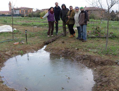 Come costruire uno stagno Complemento indispensabile nell'orto