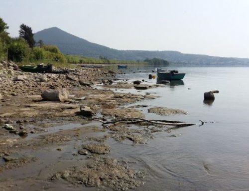 La campagna disseta (e nutre) la città Il lago di Bracciano e l'acqua di Roma