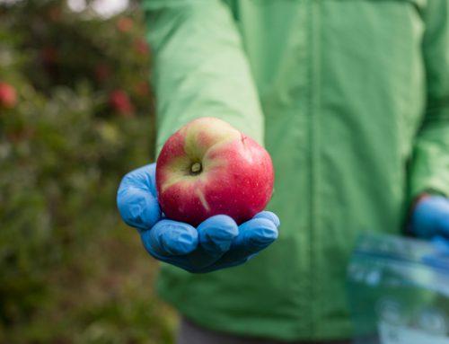 Mele avvelenate: il documentario di Andrea Tomasi sui danni per la salute dei pesticidi agricoli