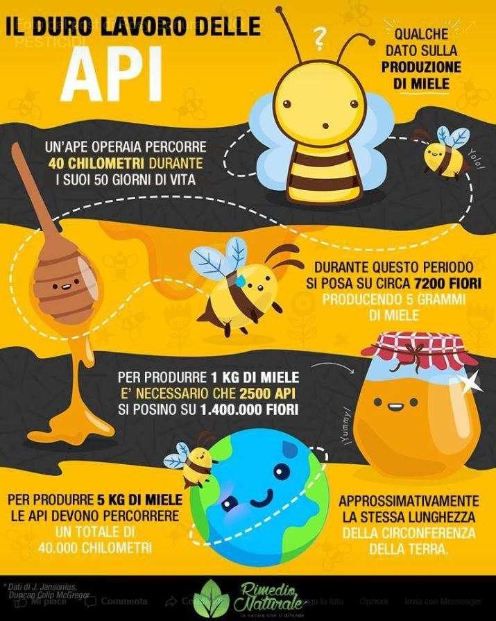 Un manifesto sull'incredibile quantità di lavoro che svolgono le api