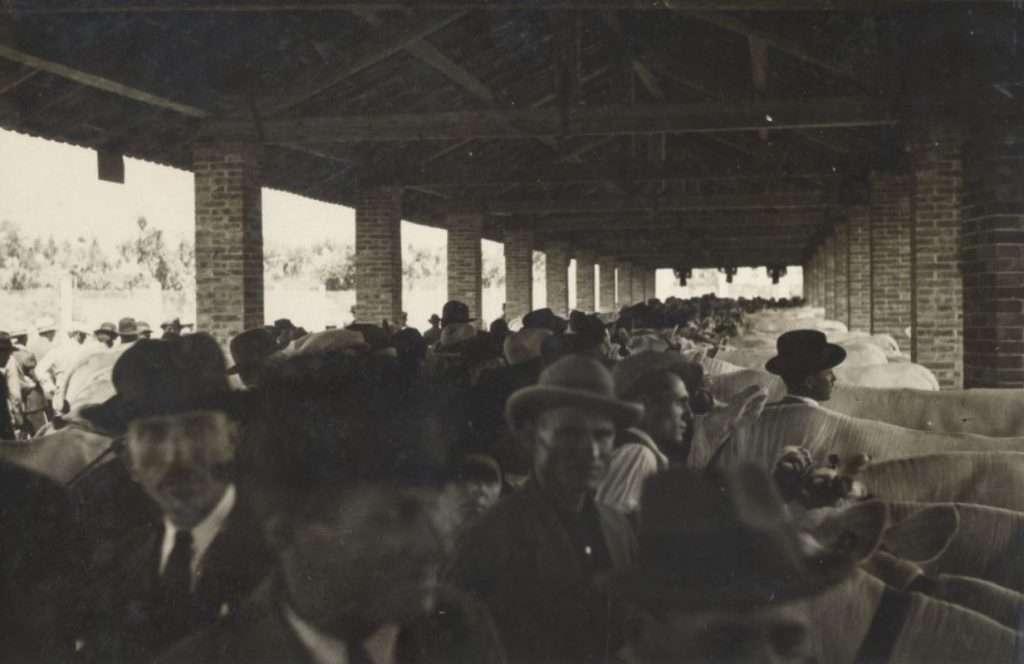 Foro Boario di Montepulciano Stazione. Archivio Ciuffi