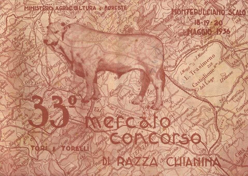 Manifesto del mercato concorso di Razza Chianina (1956)