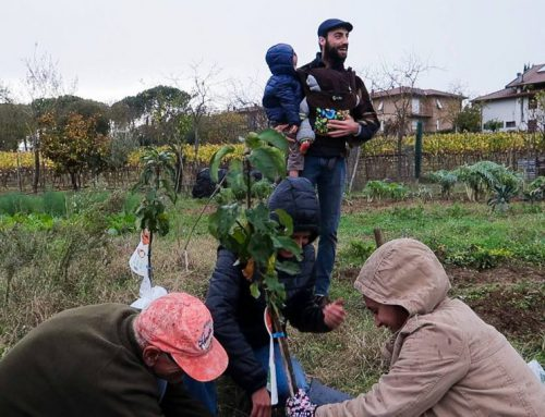I meli McIntosh di Noah ed Elijah Incontri e sorprese nel Bosco di Ogigia