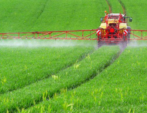 Chi fermerà i pesticidi? Azioni contro l'avvelenamento del mondo