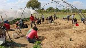Lavorare nell'orto ci permette di fare movimenti diversi