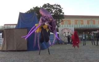 Lo spettacolo Pindarico del Circo Improvviso alla Festa della Decrescita Felice