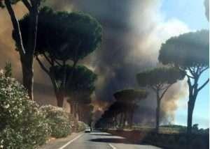 Il fumo dell'incendio divampato nella pineta di Castelfusano a Ostia (Roma), 17 luglio 2017. ANSA/ALESSIA DI LIBERTO-CHIARA SMAREGLIA