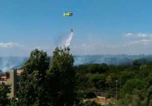 Elicottero al lavoro sopra la Pineta di Castel Fusano - Roma