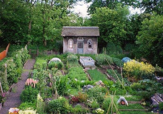 Casetta dei sogni con giardino verde, pieno di fiori e ortaggi