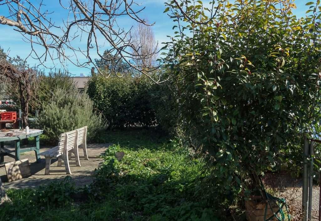 Angolo di giardino da destinare a orto