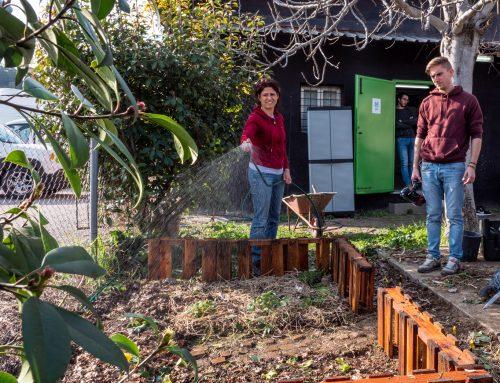 Come ho fatto l'orto urbano della Slim Dogs Coltivare verdure in città si può. Anche in ufficio