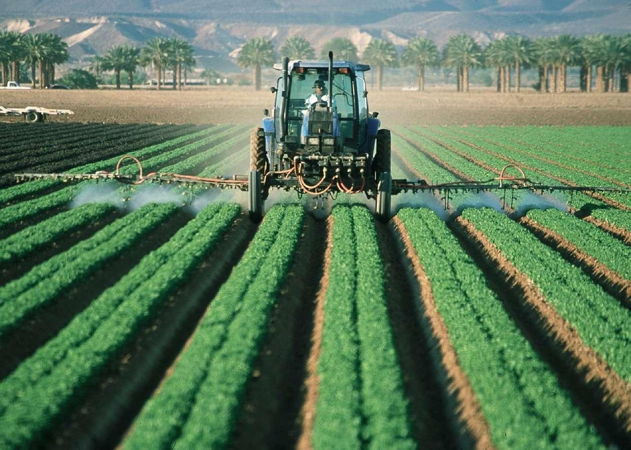 L'agricoltura industriale moltiplica gli sprechi