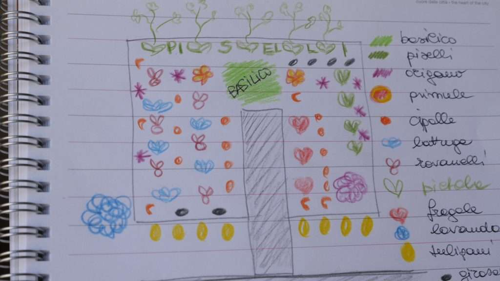 Lo schema delle semine e dei trapianti
