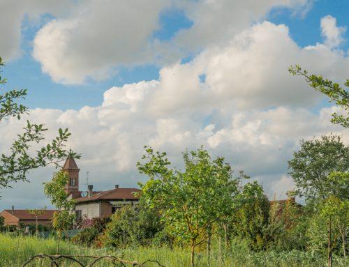 Come irrigare orti e giardini senza sprecare acqua Dai sistemi naturali alle tecnologie innovative