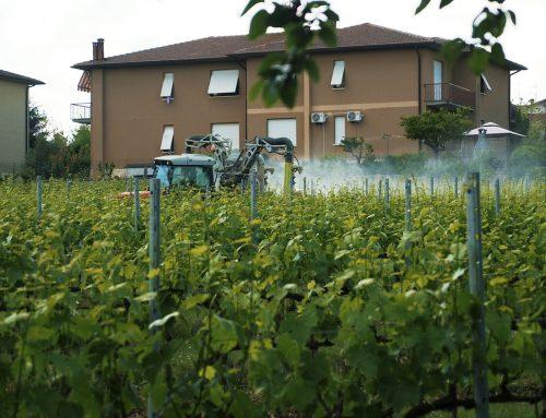 Cibo e veleni: perché non dobbiamo rassegnarci Le norme che ci difendono dai pesticidi