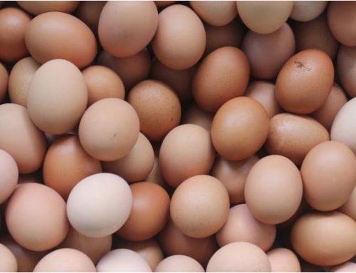 Quando le uova erano una moneta Economia di scambio in Toscana negli anni '40-'50