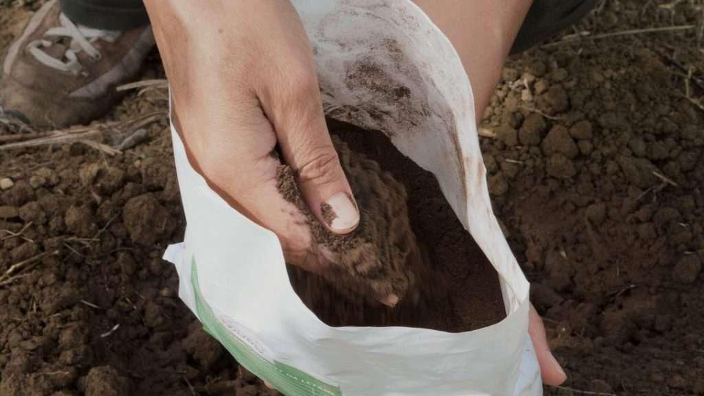 IL'humus di lombrico assomiglia alla polvere di caffè è ha un leggere profumo di bosco