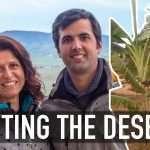Coltivare senz'acqua. Fruiting the Deserts
