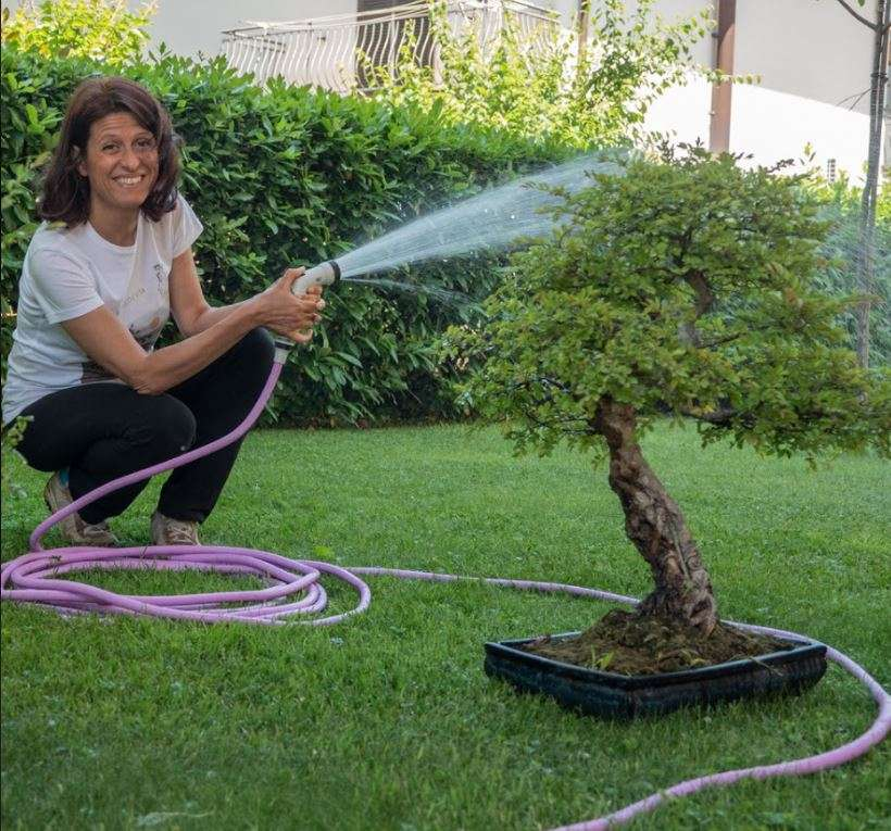 irrigazione in giardino