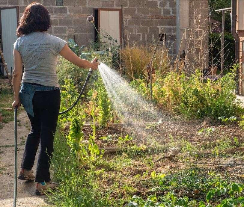 irrigazione del piccolo orto sotto casa