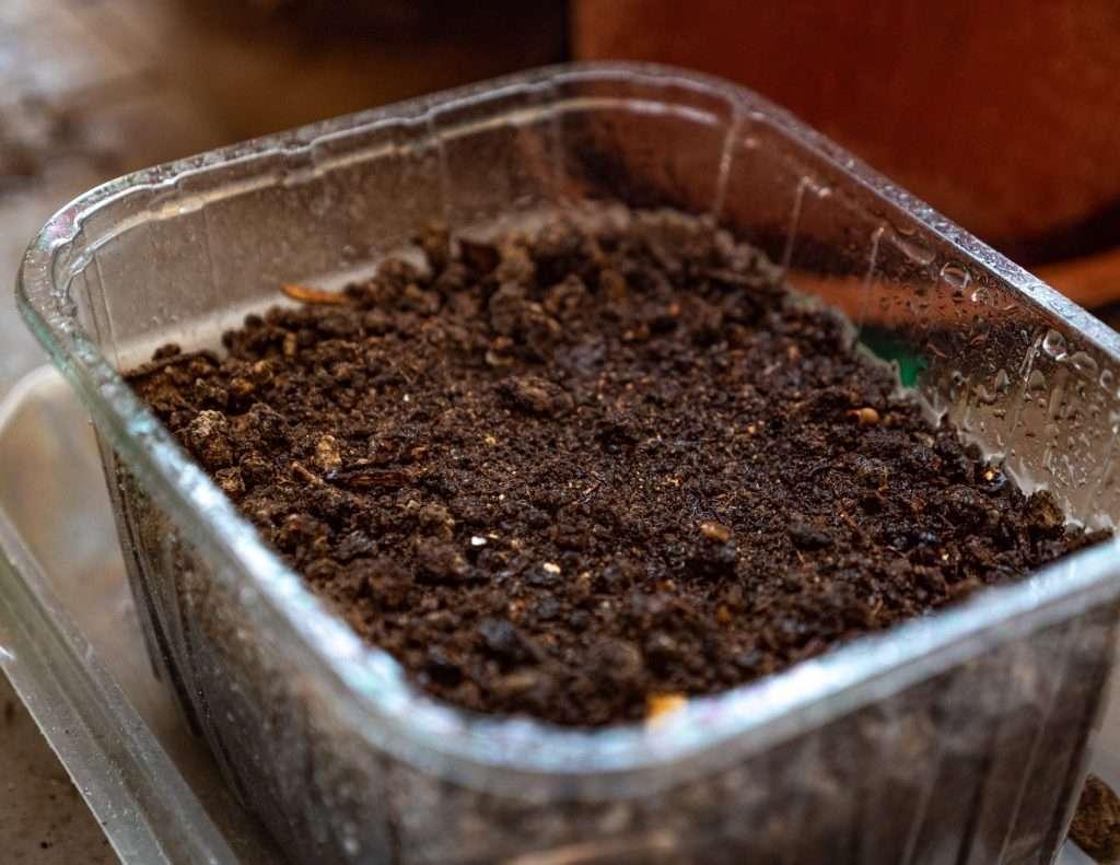 terra per mini orto