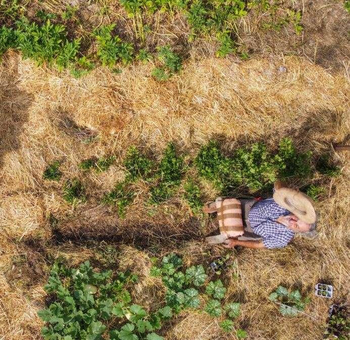 Fase di semina, Gian Carlo poggia su un banchetto imbottito