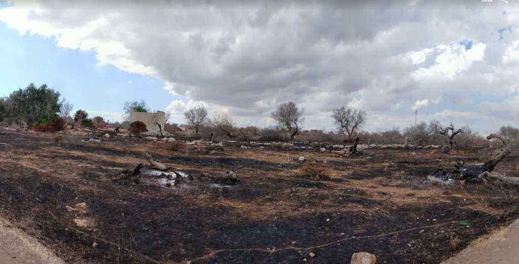 terreni incendiati in Puglia